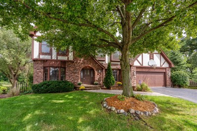 25W710  White Birch Lane, Wheaton, IL 60189 - #: 10025321