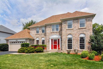 583 Apple River Drive, Naperville, IL 60565 - MLS#: 10025437