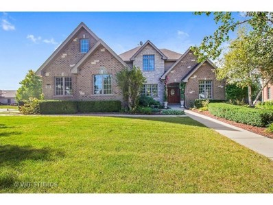 14230 S 87th Place, Orland Park, IL 60462 - #: 10026211