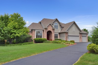 11013 Morning Dove Lane, Spring Grove, IL 60081 - #: 10026847