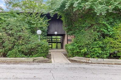 5503 E LAKE Drive UNIT C, Lisle, IL 60532 - MLS#: 10027899