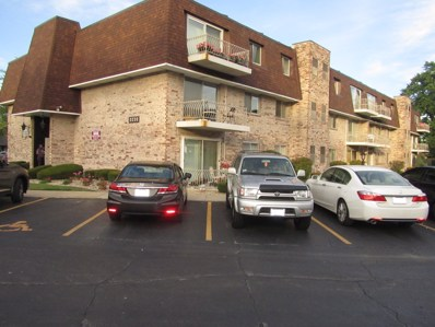 3235 S Manor Drive UNIT 202, Lansing, IL 60438 - MLS#: 10028147