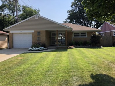 15 S Kerwood Street, Palatine, IL 60067 - #: 10028749