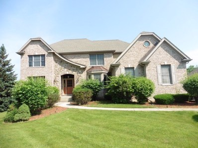 3501 Sandstone Court, Lake In The Hills, IL 60156 - #: 10029166