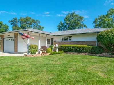 366 Wilshire Street, Park Forest, IL 60466 - #: 10029571