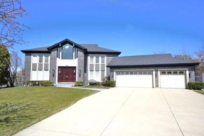 805 Pinto Lane, Northbrook, IL 60062 - #: 10029702