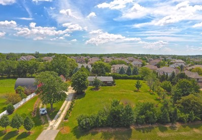 13941 Wolf Road, Orland Park, IL 60467 - MLS#: 10029794