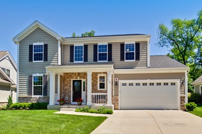 206 Cater Lane, Libertyville, IL 60048 - MLS#: 10029983