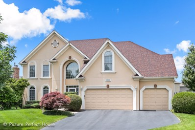 2232 Hillsboro Lane, Naperville, IL 60564 - MLS#: 10030380