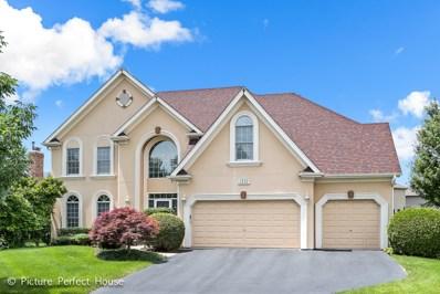 2232 Hillsboro Lane, Naperville, IL 60564 - #: 10030380