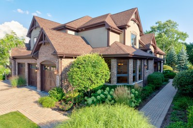 1050 Mackenzie Place, Wheaton, IL 60187 - #: 10030430