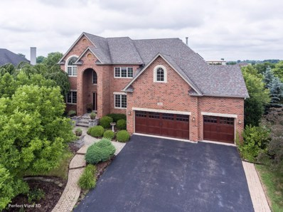 12812 Scoter Court, Plainfield, IL 60585 - #: 10031123