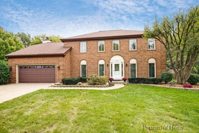 805 Old Orchard Avenue, Downers Grove, IL 60516 - #: 10031443