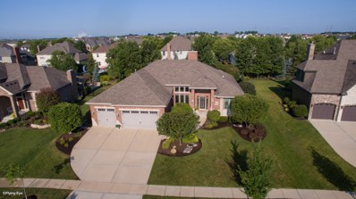 21322 Forest View Drive, Shorewood, IL 60404 - MLS#: 10031676
