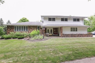526 S Meadow Lane, Peotone, IL 60468 - #: 10031743