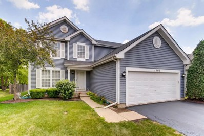 1167 Lakewood Circle, Naperville, IL 60540 - MLS#: 10032261