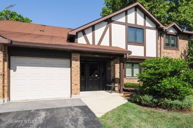 510 Banyon Lane UNIT C, La Grange, IL 60525 - MLS#: 10033154