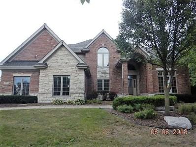 11770 AZURE Drive, Frankfort, IL 60423 - #: 10033400