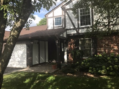 42 Plymouth Court UNIT 6-102B, Naperville, IL 60565 - #: 10033500