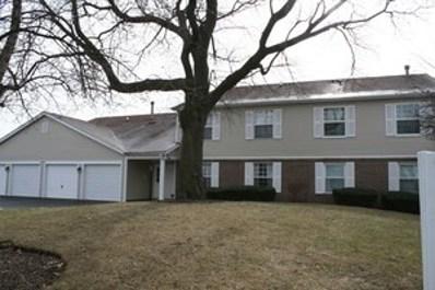 699 Greenfield Court UNIT B2, Bartlett, IL 60103 - MLS#: 10033640