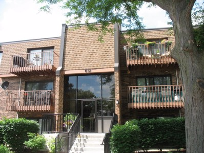 612 S Waterford Road UNIT 3D, Schaumburg, IL 60193 - #: 10035741