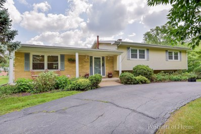20821 Greenwood Center Court, Olympia Fields, IL 60461 - MLS#: 10036042