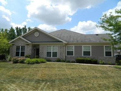 21313 Hidden Lake Court, Crest Hill, IL 60403 - MLS#: 10036098