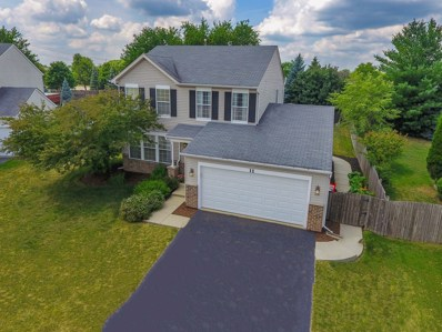 11 Woodland Court, South Elgin, IL 60177 - MLS#: 10036152