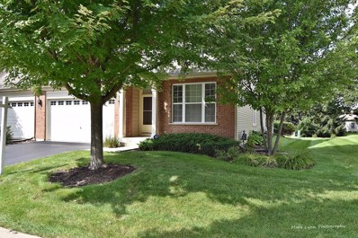 1182 Woodridge Drive, Sugar Grove, IL 60554 - MLS#: 10036659