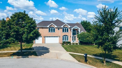 6742 Lakeview Court, Woodridge, IL 60517 - #: 10037070