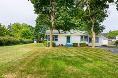 1107 Cherry Street, Lake In The Hills, IL 60156 - #: 10037443