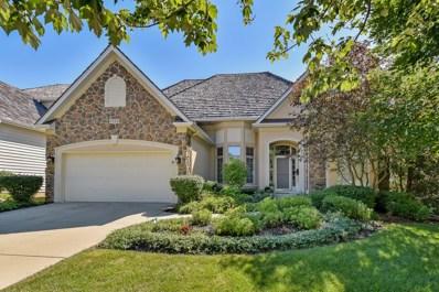 1211 Arborside Drive, Aurora, IL 60502 - MLS#: 10037546