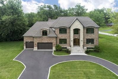 41 Birchwood Road, Northbrook, IL 60062 - #: 10037732