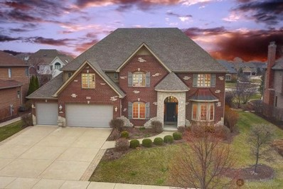 507 Eagle Brook Lane, Naperville, IL 60565 - #: 10038178