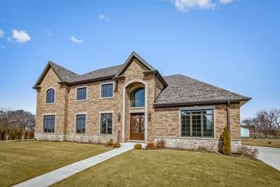 1503 Shiva Lane, Naperville, IL 60565 - #: 10038768