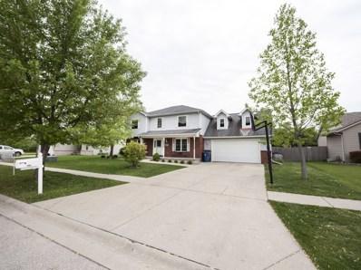667 Cottage Court, Morris, IL 60450 - MLS#: 10038778