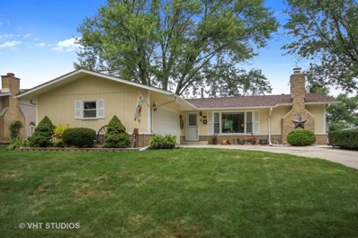 6114 Rob Roy Drive, Oak Forest, IL 60452 - #: 10039213