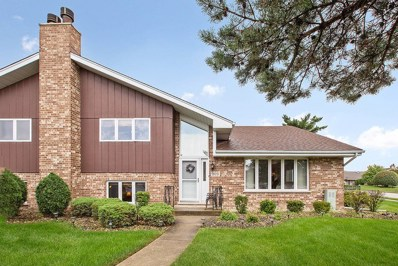 18031 Idaho Court UNIT 145, Orland Park, IL 60467 - MLS#: 10040017