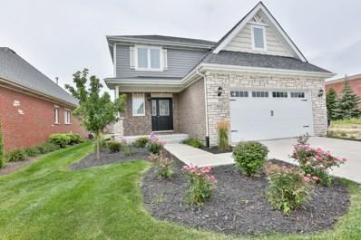 9433 Rich Lane, Orland Park, IL 60467 - #: 10040027
