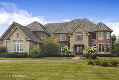 20005 Old Meadow Trail, Long Grove, IL 60047 - #: 10040168
