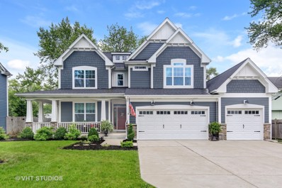 409 Atwood Court, Downers Grove, IL 60516 - #: 10040453