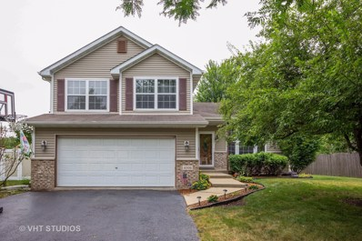 4506 Northmont Drive, Plainfield, IL 60586 - MLS#: 10040808