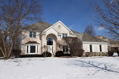 14584 N Somerset Circle, Libertyville, IL 60048 - #: 10040903