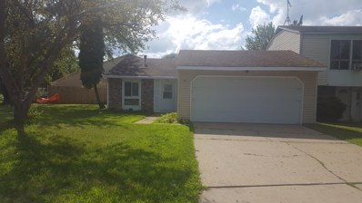 44 VILLAGE Court, Elgin, IL 60120 - #: 10041018