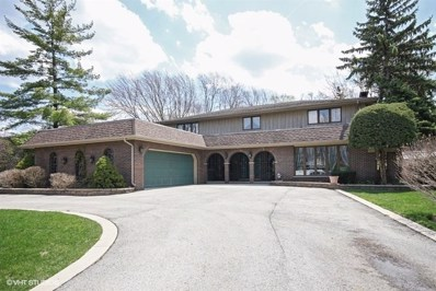 6705 Golfview Lane, Palos Heights, IL 60463 - #: 10041196