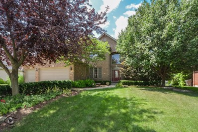 14134 S 85th Avenue, Orland Park, IL 60462 - MLS#: 10041344