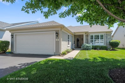 306 National Drive, Shorewood, IL 60404 - MLS#: 10041475