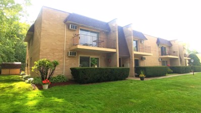 12850 S 71st Avenue UNIT 208, Palos Heights, IL 60463 - #: 10041687