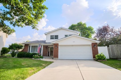 6910 Robey Avenue, Downers Grove, IL 60516 - #: 10041709