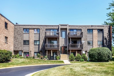 1440 Stonebridge Circle UNIT J11, Wheaton, IL 60189 - #: 10041918